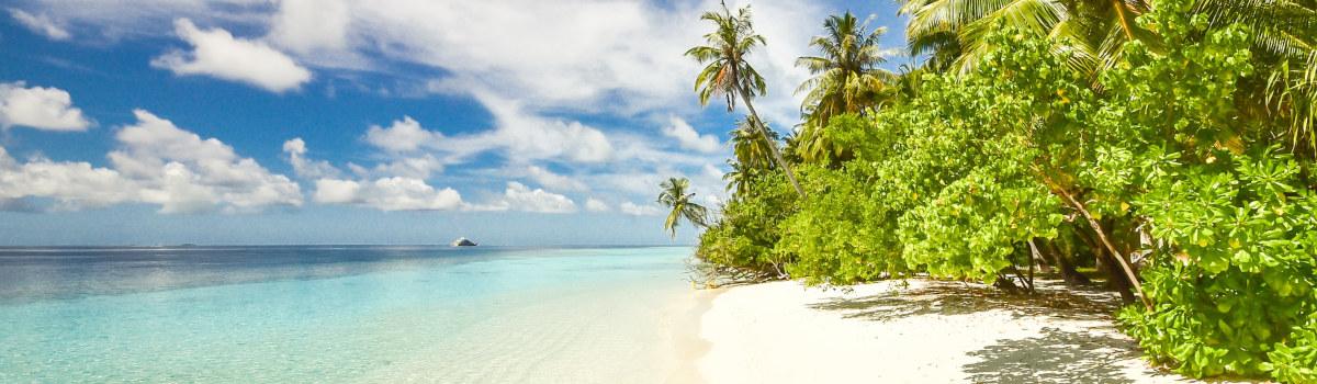 Purjehdi Karibialla
